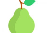 Pear Launcher Pro v2.1.1 Crack Plus Latest Version